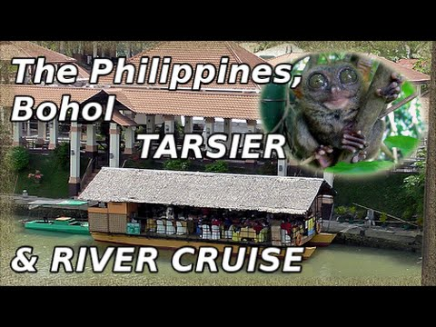 Bohol Tourist Loboc River Cruise & Philippine Tarsier