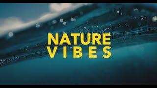Nature Vibes - Hawaii 4k