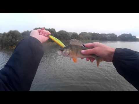 рыбалка во  койданово