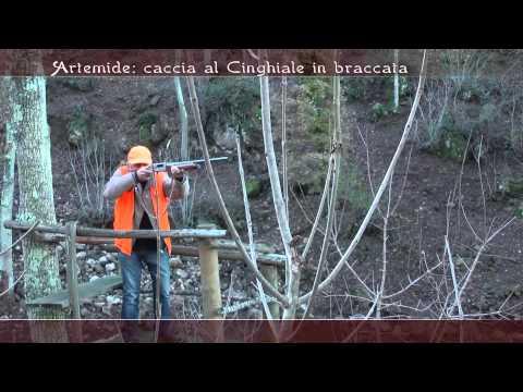 2012-2013 Puntata #11 - Argentario - Caccia al Cinghiale in braccata