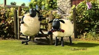Shaun The Sheep _ Helping Hound
