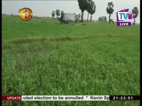 farmers suffering wo|eng