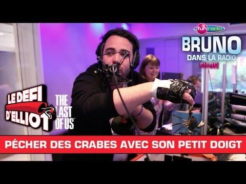 Combien de crabes Elliot peut-il attraper avec son petit doigt en 1 minute ? – Bruno dans la Radio