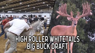 High Roller Buck Draft | The BEST Deer Sale in the World