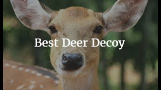 Best Deer Decoy 2019