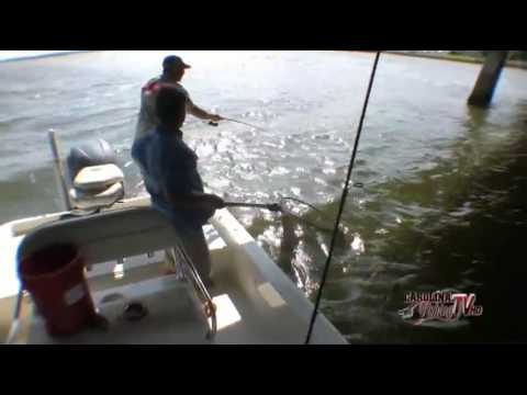 Carolina Fishing TV: Swansboro Sheepshead Part I