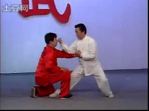 Short BaguaZhang Technique demonstration Image 1