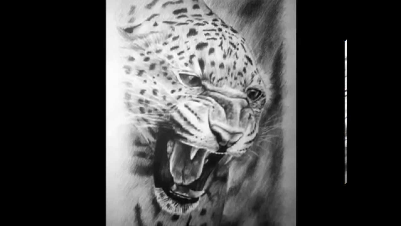 Dibujo Lapiz Animales Dibujos al Carbón y a Lápiz