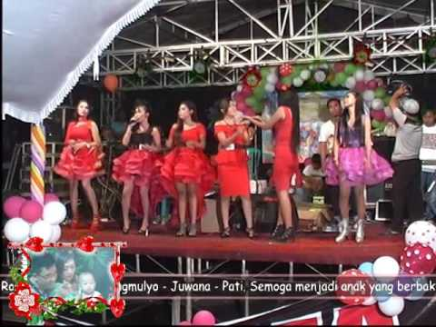 Dangdut Rama Music Genengmulyo - Kimcil Kepolen (Cover)