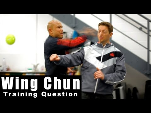 wing chun training - how to attack Q27 Image 1