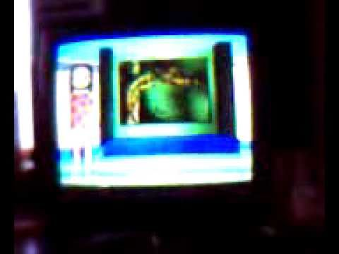 タガメの画像 p1_32
