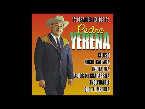Pedro Yerena - Celoso
