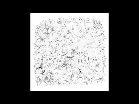 Au Revoir Simone - I Couldn39t Sleep Darkel Remix