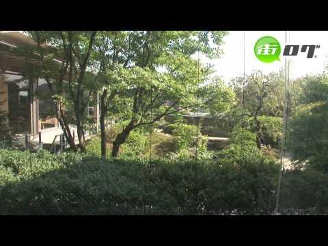 伊東温泉 青山やまと - 地域情報動画サイト 街ログ