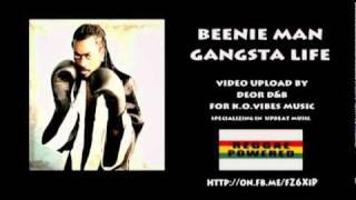 Watch Beenie Man Real Gangsta video