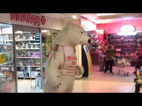 Веселый медведь на работе.