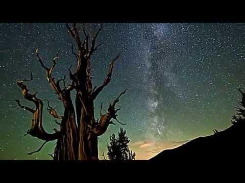 Красивое видео. Природа.