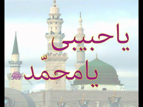 Download Ya Habibi Ya Muhammad|Ya Nabi salam alayka|heart touching Naat|Salam|Islamic Status Mp4 baru