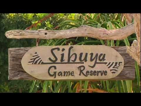 Sibuya Game Reserve Overview