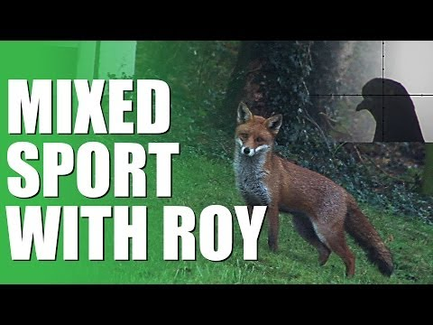 Fieldsports Britain - Mixed sport with Roy Lupton (episode 211)