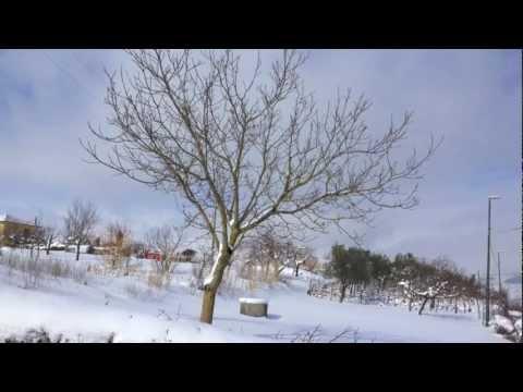 Savignano Irpino - Neve Febbraio 2012 Panorami di Savignano Irpino, nella nevicata record di Febbraio 2012.