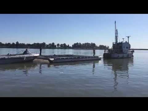 California drought prompts salmon rescue