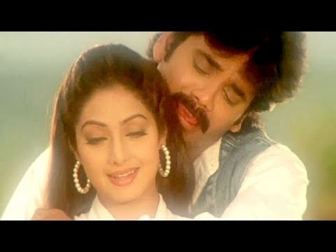 Jaanum Meri Jaanum - Sridevi, Nagarjuna, Mr. Bechara Song video