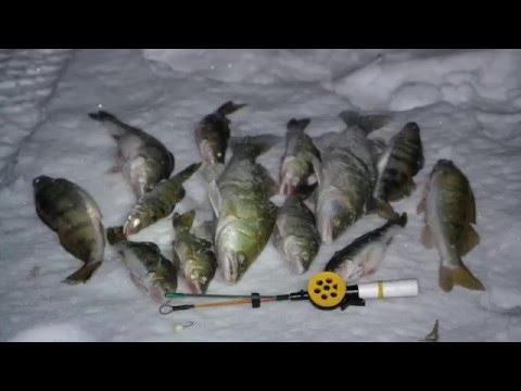 купить тюльку для рыбалки в ярославле
