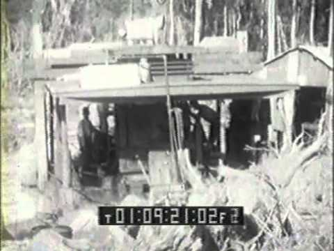 Cypress Logging in Louisiana circa 1925 (Part 1 of 2)