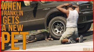 GTA V -  When Franklin Gets a New Pet