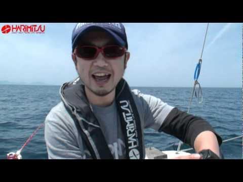 浦島沖メバル