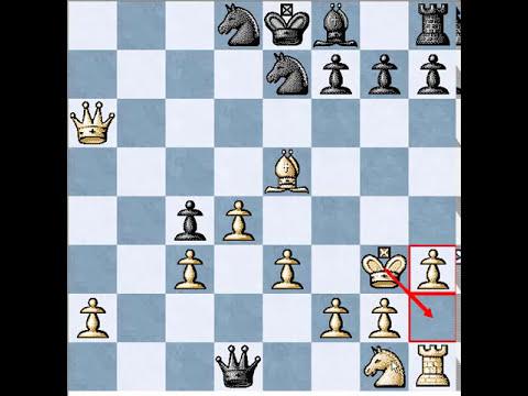 Chess - London System 2.Bf4,c5 3.e3,Nc6