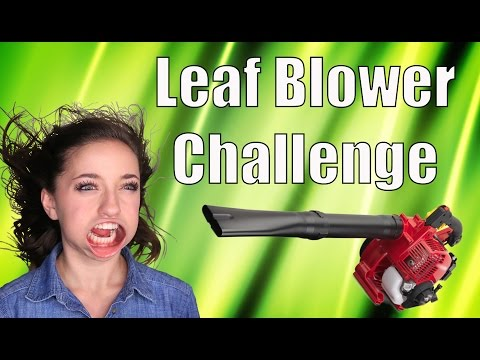 Leaf Blower Challenge | Twins Brooklyn & Bailey