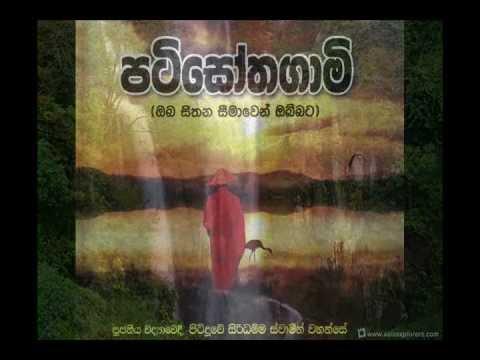 Patisothagami   Pitiduwe Siridhamma Thero - Siri Samanthabaddra Himi video