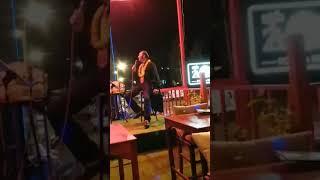 Elvis Fandango sings Everybodys talkin at me