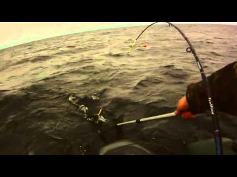 рыбалка на ладоге и онеге