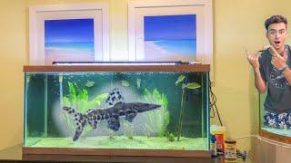 RAREST Catfish EVER Has A MASSIVE Fish Tank!