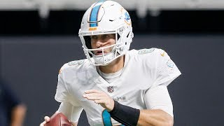 Dolphins Come Back in Second Half to Top the Falcons 20-17 | Stadium