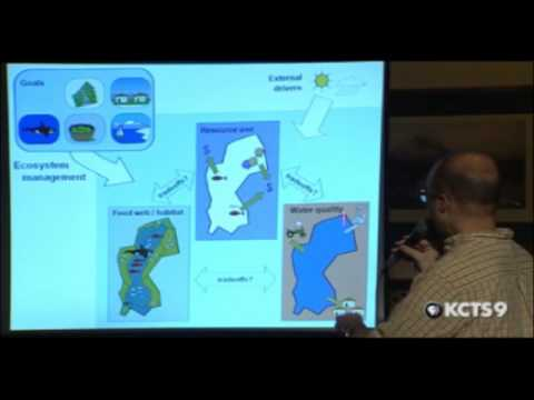 Marine Ecosystems From Alaska to Puget Sound | QUEEN ANNE SCIENCE CAFE