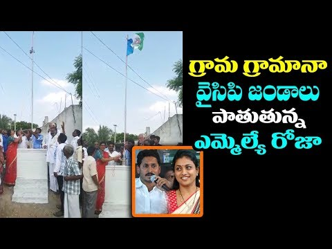 MLA Roja Hosting YSRCP Flag | Roja Latest News | YS Jagan Padayatra Got Success In AP |Mana Aksharam