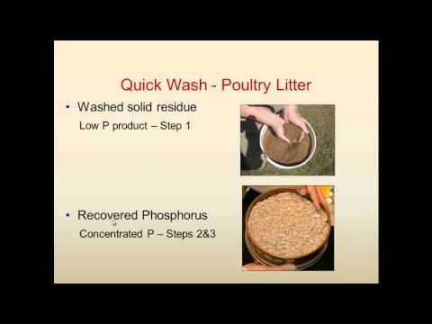 Process for recovery of phosphorus (P) from solid manure