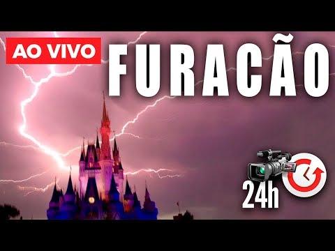 🔴 AO VIVO RECORDE DE MAIS DE 1 MÊS!  - CAMERAS 24H/ 7 DIAS