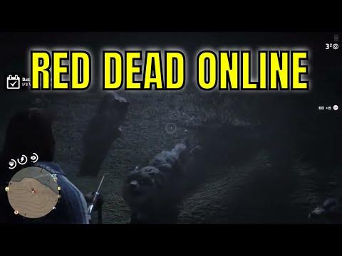 Red Dead Online #26 - Free Roam LiveStream