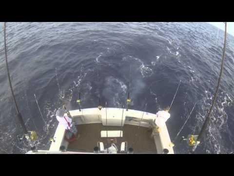 "Offshore fishing in Hong Kong onboard ""Liquid Asset"""