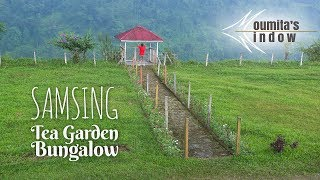 A One Day Trip to Samsing Tea Garden Bungalow