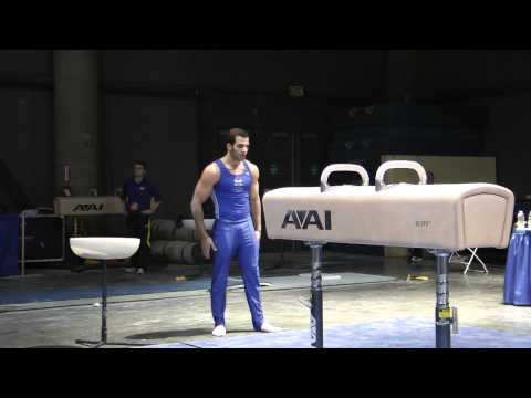 Danell Leyva - Pommel Horse - 2012 Winter Cup Prelims