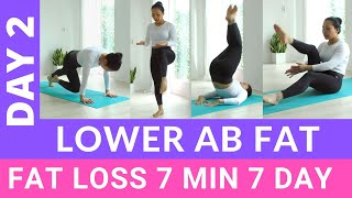 Burn Lower Belly Fat - Fat Loss Weight Loss 7 Min 7 Day Challenge #2