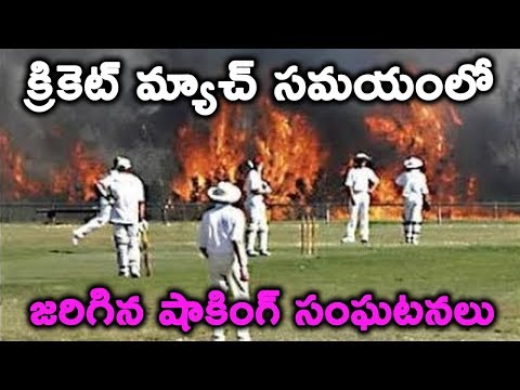 Most Ugly Fights in Cricket History of all Times || Interesting facts