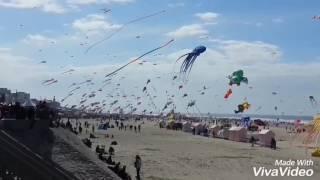 International kites festival