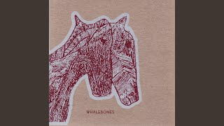 Watch Whalebones Morning Man video